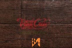 Gạch Vĩnh Cửu giả gỗ màu nâu ốp tường VC41