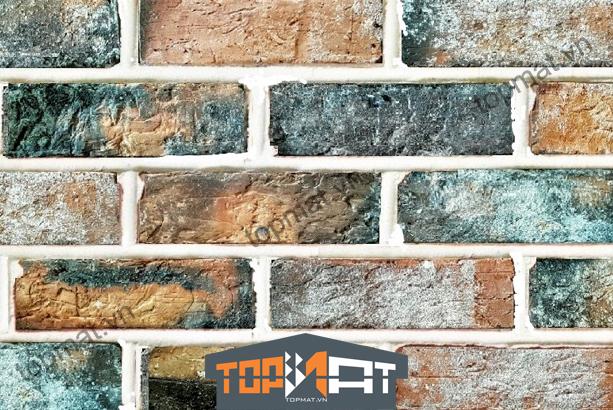 mẫu gạch cổ ốp tường đẹp
