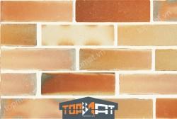 Gạch cổ ốp tường AT13
