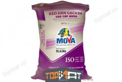 Keo dán gạch đá cao cấp Mova MFTA-1