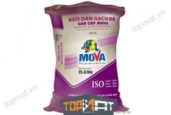 Keo dán gạch đá cao cấp Mova MFTA