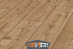 Sàn gỗ Kronotex Exquisit D2774