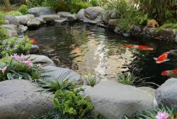 Đá cuội trang trí - Cách sắp đặt trang trí sân vườn bằng đá cuội hiệu quả nhất