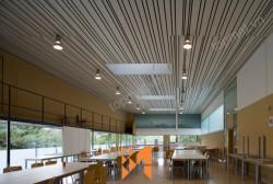 Trần nhôm Austrong - Giải pháp kiến trúc sáng tạo cho tòa nhà văn phòng