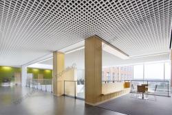 Lựa chọn mẫu trần nhôm đẹp lôi cuốn cho kiến trúc trần nhà